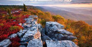 Photo a rocky ledge in autumn